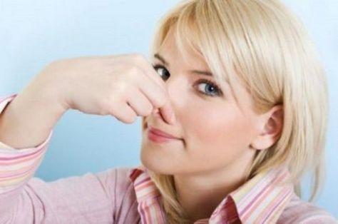 Di certo non gradirete i cattivi odori che provengono per esempio dalla pattumiera, dalla cucina quando magari puliamo il pesce o friggiamo qualcosa oppure dal frigo, dagli stipiti….ma anche dagli armadi, dalle scarpe da ginnastica, per non parlare dell'odore stantio della muffa, ecc. E del cattivo odore che ci regalano i nostri amici a quattro …