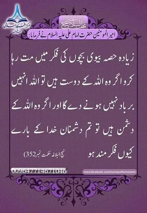 Pin by Ameer Afzaly on Jauhar e Islam  | Imam ali quotes