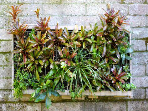 DIY Pallet Vertical Garden: Cocoon Home Design