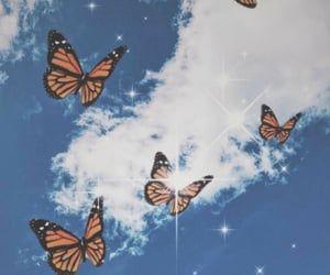 Butterfly Wallpaper Butterfly Desktop Background Butterfly Wallpaper Butterfly Background Pink Butterfly