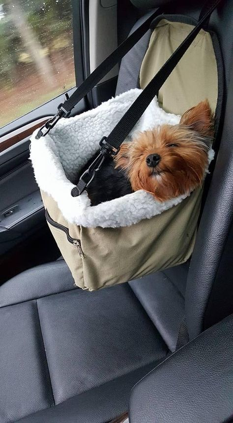 Dog Car Seat Booster - DoggyMarketThe Effective Pictures We Offer You About dog accessories travel A quality p Dog Accesories, Pet Accessories, Car Interior Accessories, Dog Car Seats, Small Dog Car Seat, Dog In Car, Puppy Car Seat, Gato Gif, Booster Car Seat