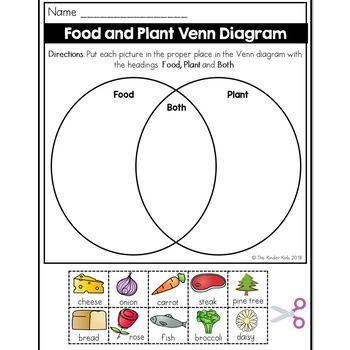 Food And Plant Venn Diagram Worksheet Venn Diagram