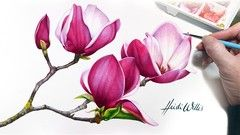 Paint Realistic Watercolour and Botanicals - MAGNOLIAS
