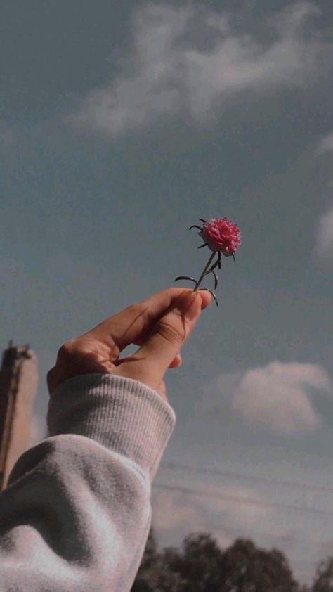 Aesthetic backgrounds hand pictures instagram ideas