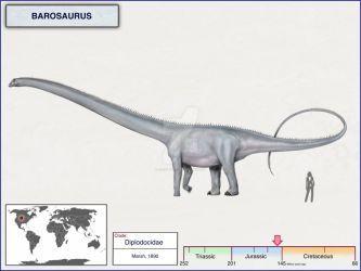 19++ Barosaurus size ideas