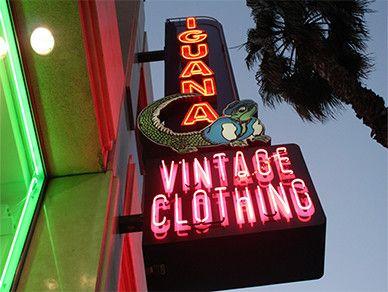Iguana Vintage Clothing Vintage Outfits Vintage Store Vintage