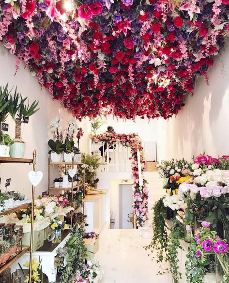 Good morning London! This place is amazing, why not have a flower ceiling if you're a florist shop and you can?! - This beautiful shop is Moyses Stevens (@moysesstevens) near Sloane Square. Picture credit: @wanderall 📸👌 Tag everyone who would love this! -