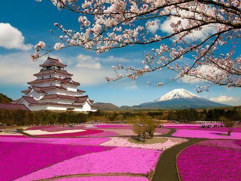 Spring Season In Japan Photographic Print Krishna Wu Art Com In 2021 Beautiful Landscape Wallpaper Japan Mount Fuji