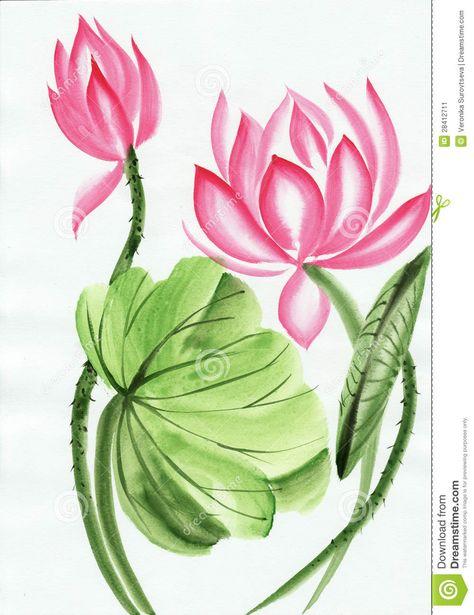 Pintura De La Acuarela De La Flor De Loto Rosada Descarga De Over