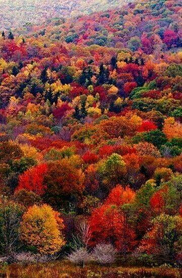 Pin By Renny Hagan On Tajkepek Autumn Landscape Autumn Scenery New England Fall