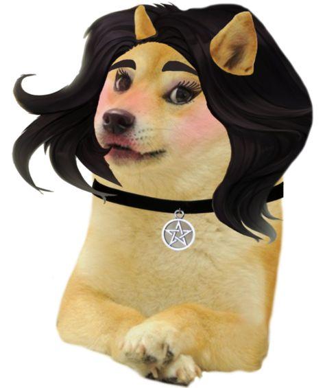 Doomer Girl Doge Ironic Doge Memes In 2021 Doge Doge Meme Memes