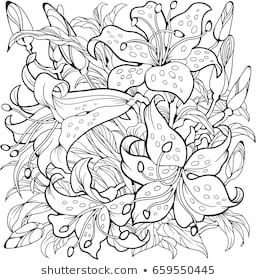Lily Flowers Line Art Drawing Coloring Page Line Art Drawings Flower Art Drawing Flower Coloring Pages