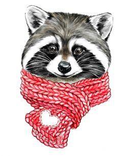 енотик в шарфе новая доска в 2019 г рисунок лисы