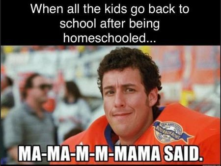 Back To School 2020 Memes That Will Make You Laugh So You Don T Cry Life With Tanay Going Back To School School Humor Parenting Memes