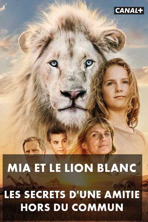 Mia Et Le Lion Blanc Critique : blanc, critique, Idées, Blanc