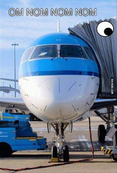 Tasty plane
