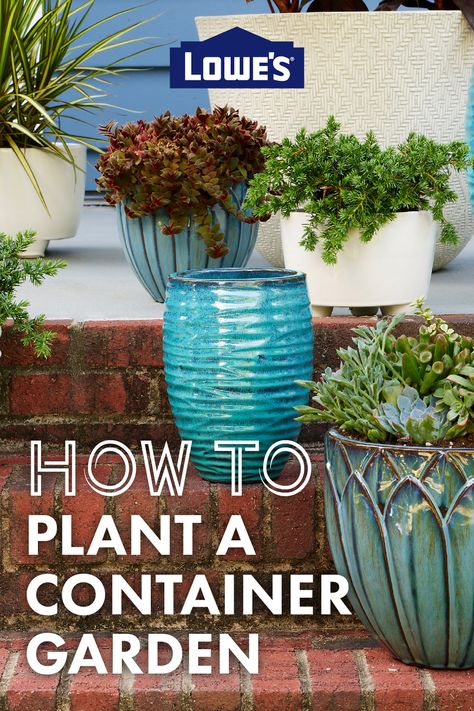 Here's a simple alternative to traditional garden beds – potted plants!