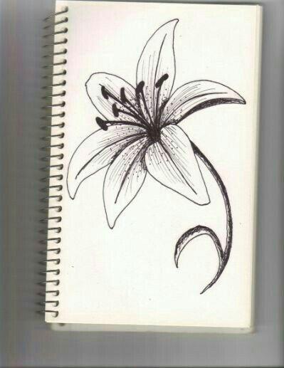 Pin En Dibujos A Lapiz Para Aprender A Dibujar