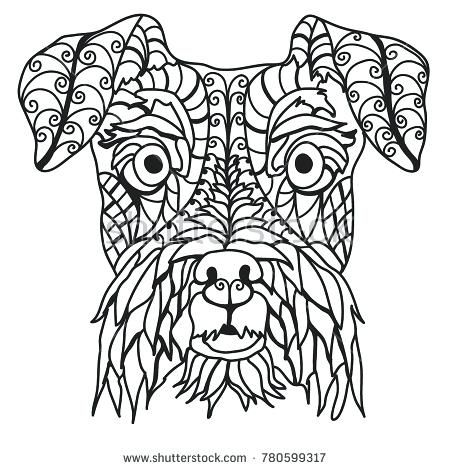 Schnauzer Coloring Pages Adorable Schnauzer Coloring Page Stock