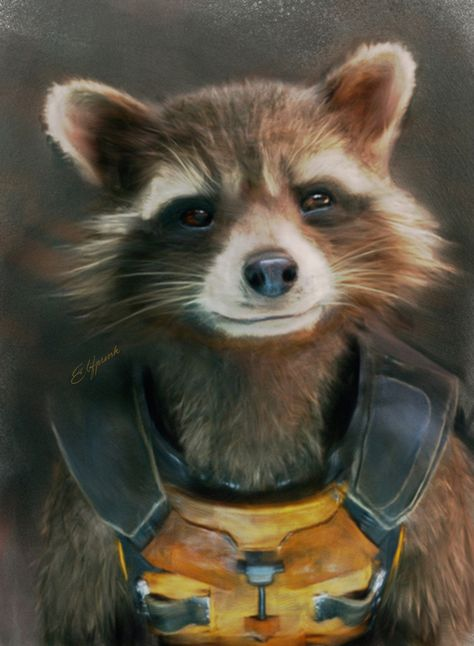 Rocket looking amazingly determined.