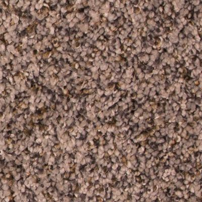 Noteworthy Medal Carpet Pricing How To Dry Basil Vinyl