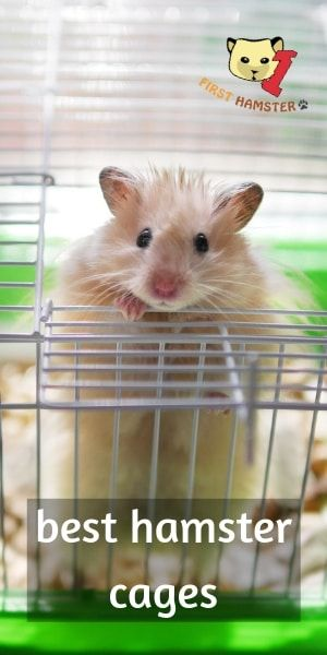 5 Best Hamster Cages For Syrian And Dwarf An Owner S Opinion Hamster Cages Cool Hamster Cages Hamster