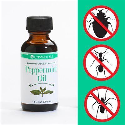 Peppermint Oil Natural Bug Repellent Recipe Natural Bug Repellent Oil Insect Repellent Insect Spray