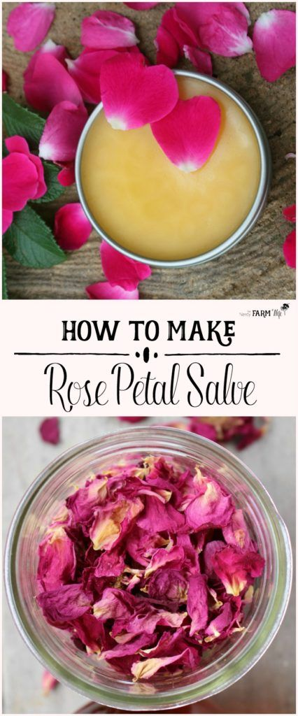 Making a homemade herbal salve is easier than you think. Herbal salves are an excellent natural first aid kit and a great alternative to chemical-based health and beauty products. Have a look at some of the best salve recipes we found.