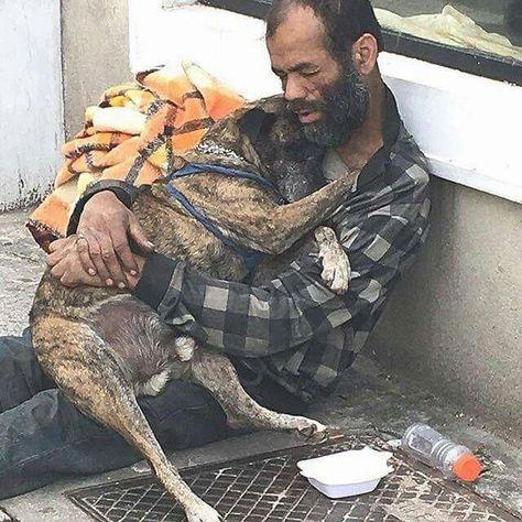 El dinero no lo es todo ❤ La grandeza no es el dinero que tienes, es lo grande que eres, pero de corazón #ExpertoAnimal #MundoAnimal #ReinoAnimal #Animales #Naturaleza #Mascotas #AnimalesdeCompañía #AnimalesGraciosos #AnimalesTiernos