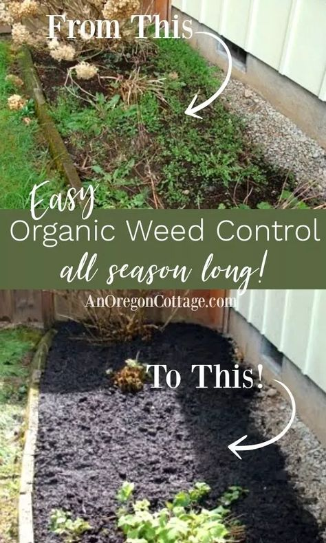 5 Easy Steps to Organic Weed Control for Beds & Borders | An Oregon Cottage