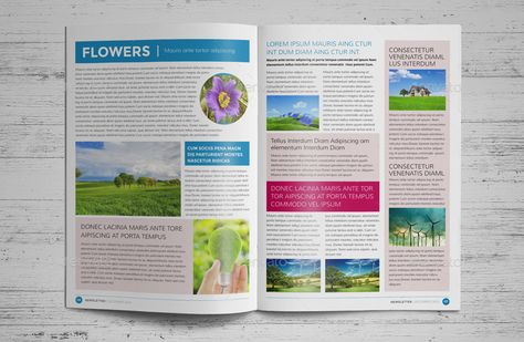 12 Page Eco Newsletter Template - InDesign