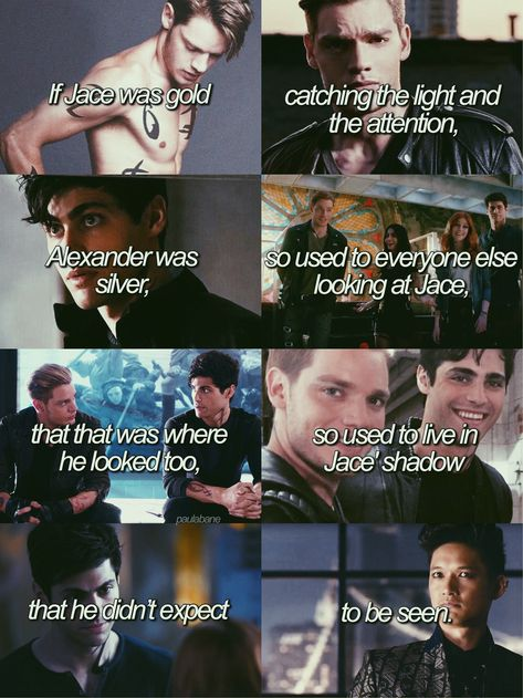 #malec #cassandraclare #thebanechronicles #aleclightwood>>but he didn't know some people preferred silver over gold