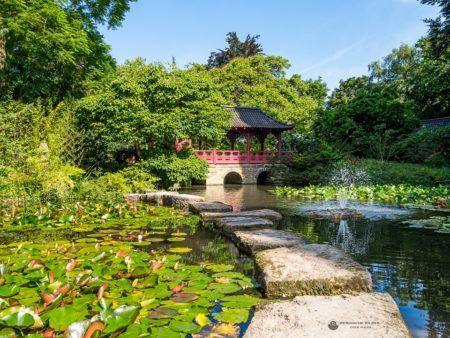 Japanischer Garten Leverkusen Japanischer Garten Leverkusen Japanischer Garten Garten