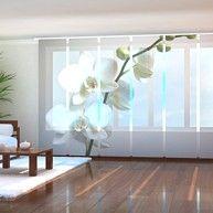 Fotogardine Pusteblumen grau Schiebegardine Schiebevorhang mit Foto auf Maß