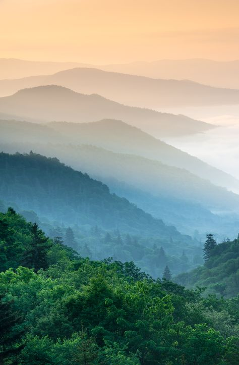 What's not to love? The Great Smoky Mountains National Park is full of such beauty and peace. #vacation