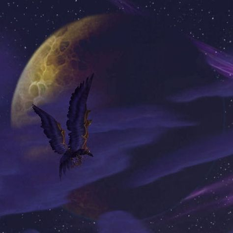 Night Elf Druid in Swift Flight Form   World of Warcraft ...