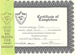 Dog Training Certificate Templates Certificate Of