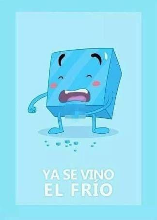 Pin De Vanessa Rojas En Funny Stuff En 2020 Chistes Tiernos Chistoso Memes De Frio