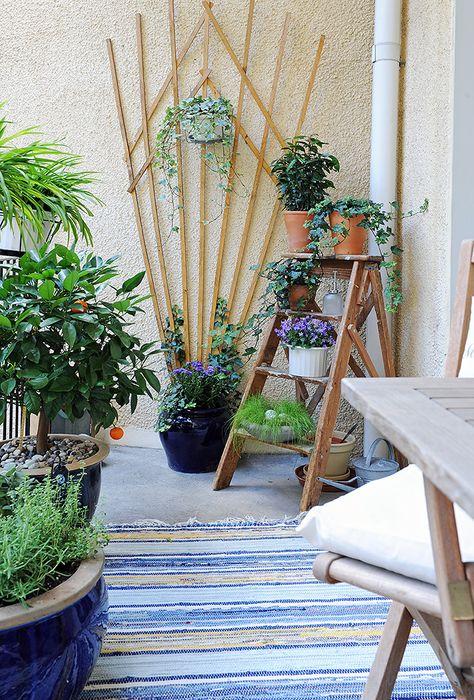 Plantas en la terraza Deco Pinterest Las terrazas, Terrazas y