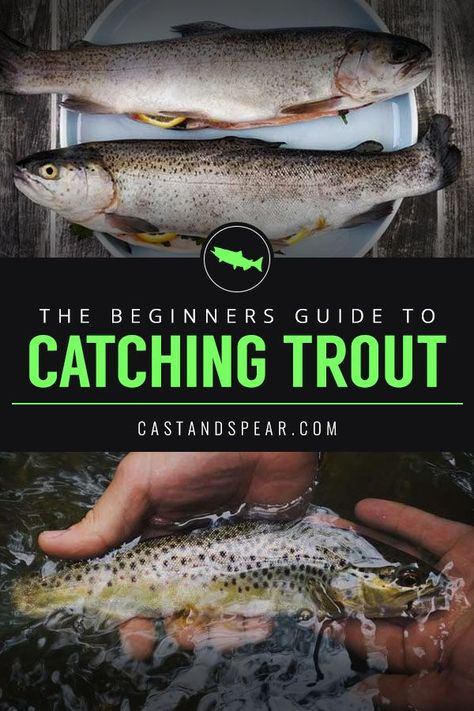 Use these tried and true trout fishing tips to catch a wide variety of trout either fly fishing or with lures. fishing fishing fishing tips fishing tying Ice fishing fishing fishing fishing Trout Fishing Bait, Trout Fishing Tips, Walleye Fishing, Fishing Guide, Salmon Fishing, Ice Fishing, Fishing Tricks, Fishing Rods, Carp Fishing