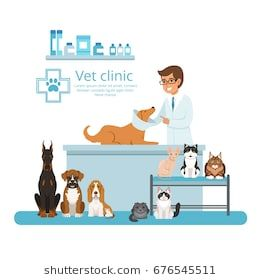 Animals In Cabinet Of Vet Hospital Vector Illustration Pet Clinic Animal Hospital Vets