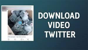 Cara Download Video Di Twitter Tanpa Aplikasi 2020 Video Papan Aplikasi