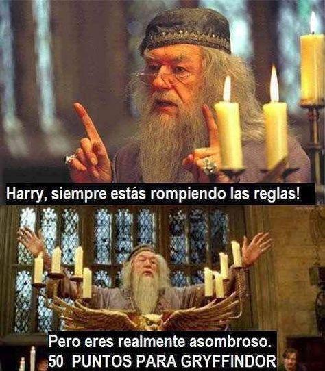 15 Discusiones que todo fan de Harry Potter ha tenido