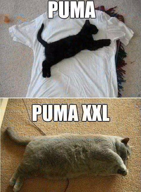 Puma & Puma XXL !!!!!