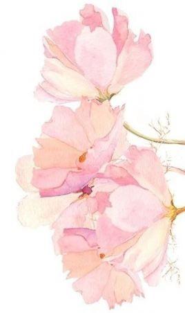 Flowers Watercolor Background Colour 37 Ideas Flowers