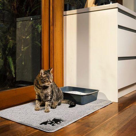 Cat Litter Mat Gray Best Cat Litter Cat Litter Mat Cat Scratching Post