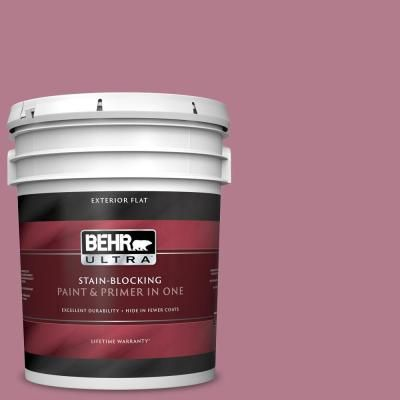 BEHR ULTRA 5 gal  #100D-4 Degas Pink Flat Exterior Paint and