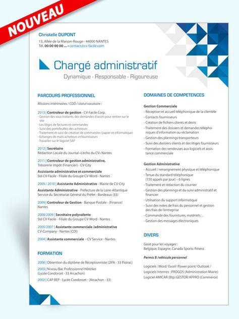 Les Les Domaines De Competences Les 3 Qualites En Haut Clarte Modele Cv Cv Assistante Commerciale Telecharger Modele Cv