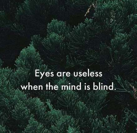 44 New Ideas For Inspirational Nature Quotes Peace Happiness Nature Quotes Inspirational Nature Quotes Yoga Quotes Funny