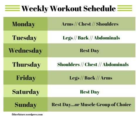 muscle strengthening muscle workout schedule